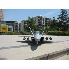 12 Channel F-22 Raptor RC Jet with double 70mm EDF and Thrust vectoring nozzles