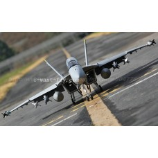 12 Channel F-18 Hornet RC Jet with double 70mm EDF and 360 degree Thrust vectoring nozzles