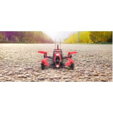 Walkera Rodeo 110 Mini Indoor Racing Drone